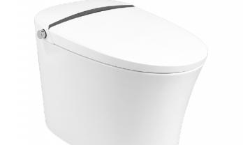 smart-toilet-36a
